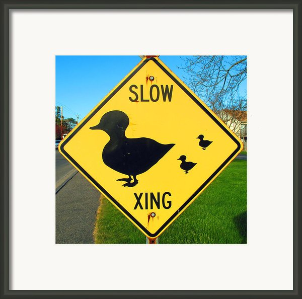Duck Crossing Sign Framed Print By Barbara Mcdevitt