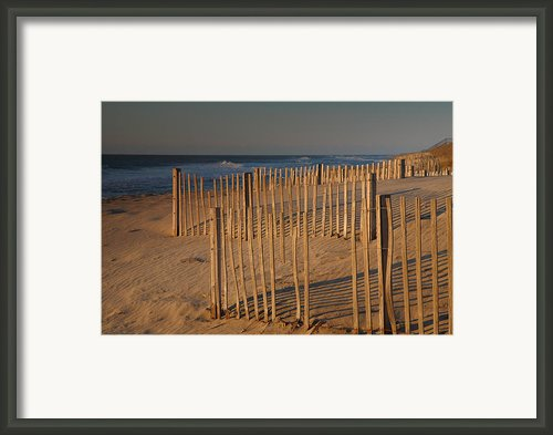 Dune Fences At First Light I Framed Print By Steven Ainsworth