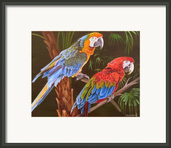 Dynamic Duo Framed Print By Phyllis Beiser