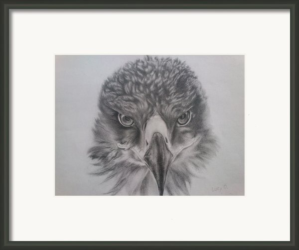 Eagle Framed Print By Lucy D