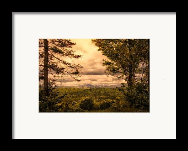 Early Spring Rain Framed Print By Bob Orsillo