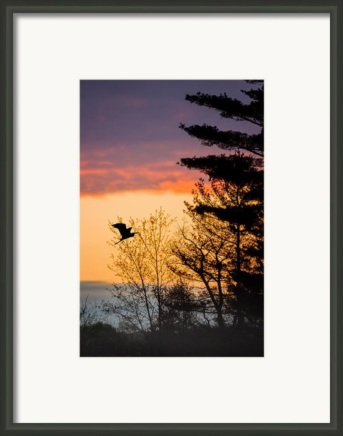 Early Start Framed Print By Bill  Wakeley