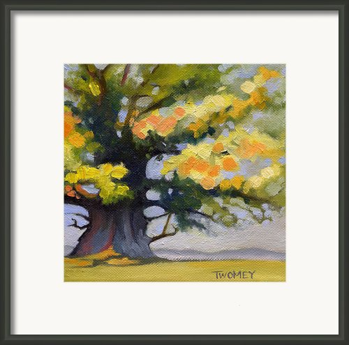 Earlysville Virginia Ancient White Oak Framed Print By Catherine Twomey
