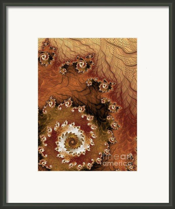 Earth Rhythms Framed Print By Heidi Smith