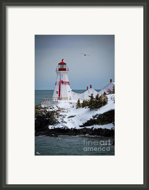 East Quoddy Head Lighthouse Framed Print By Alana Ranney