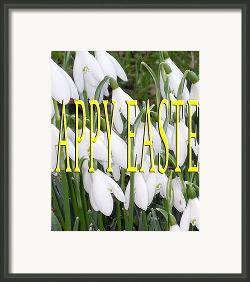 Easter 5 Framed Print By Patrick J Murphy
