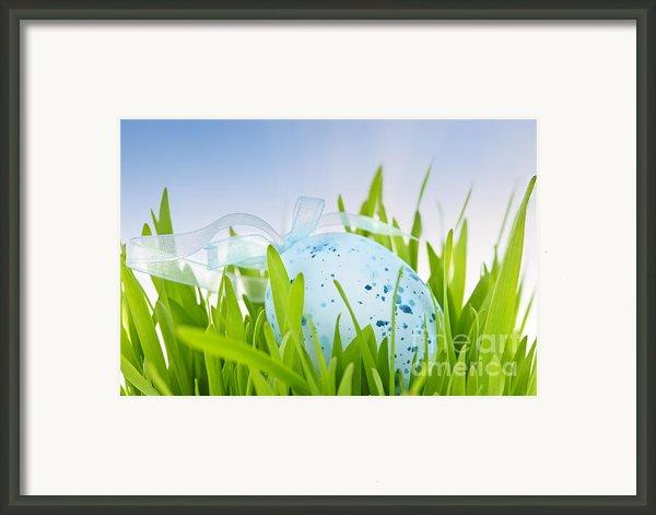 Easter Egg In Grass Framed Print By Elena Elisseeva