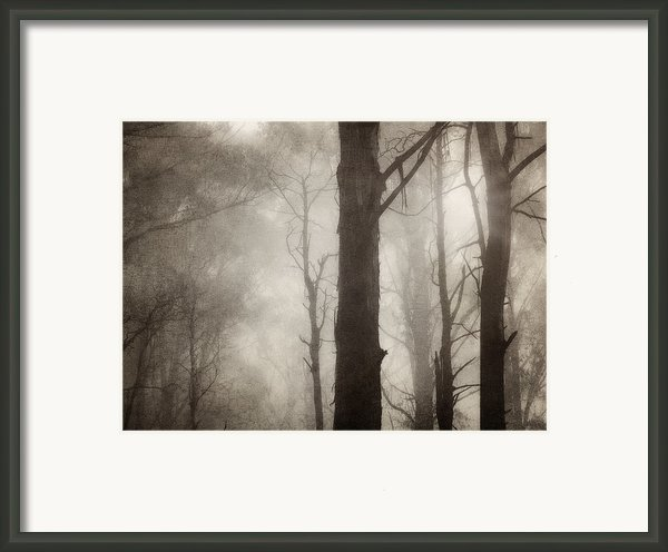 Edge Of Eternity Framed Print By Amy Weiss