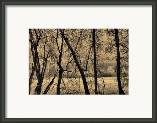 Edge Of Winter Framed Print By Bob Orsillo