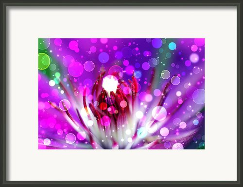 Effervescent Framed Print By Don Wright