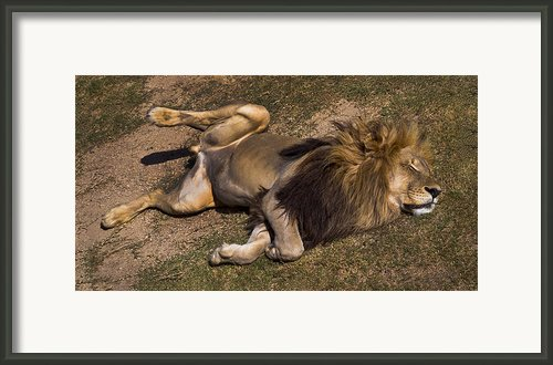 El Rey Framed Print By Skip Hunt
