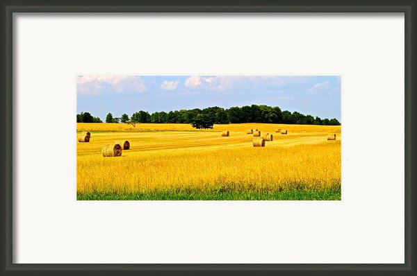 Eldorado Framed Print By Frozen In Time Fine Art Photography
