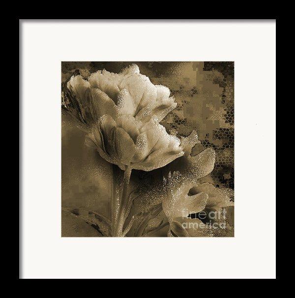 Elegance Framed Print By Yanni Theodorou