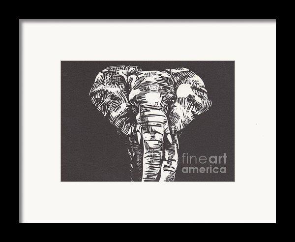 Elephant Framed Print By Alexis Sobecky