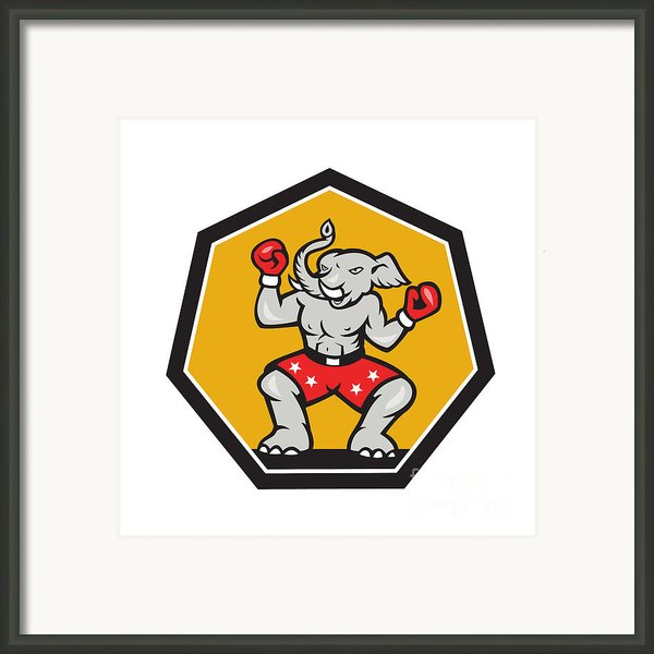 Elephant Mascot Boxer Cartoon Framed Print By Aloysius Patrimonio