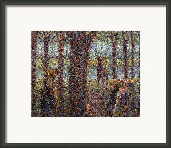 Encounter Framed Print By James W Johnson