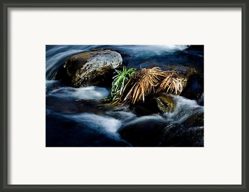 Endurance - 2 Framed Print By Jag Fergus