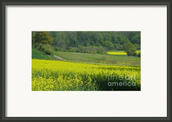 English Countryside Framed Print By Ann Horn