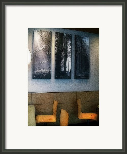 Enjoying Our Beautiful Woodlands Framed Print By Mj Olsen