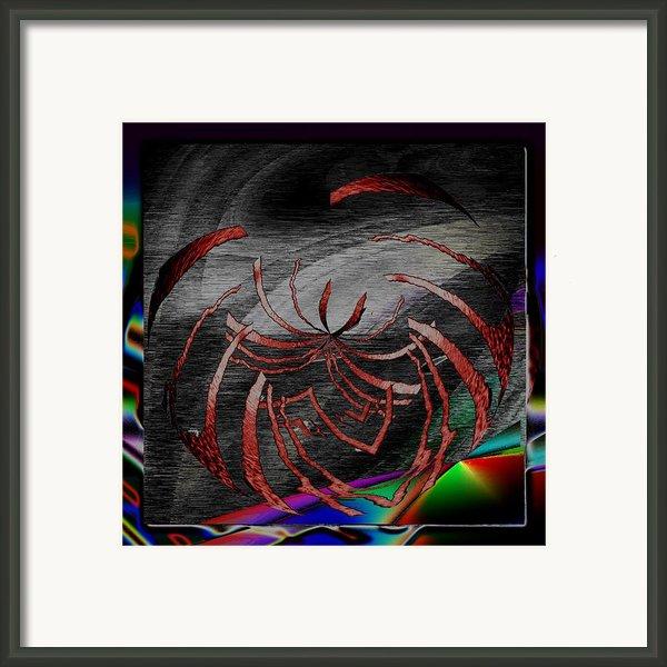 Enveloped 10 Framed Print By Tim Allen