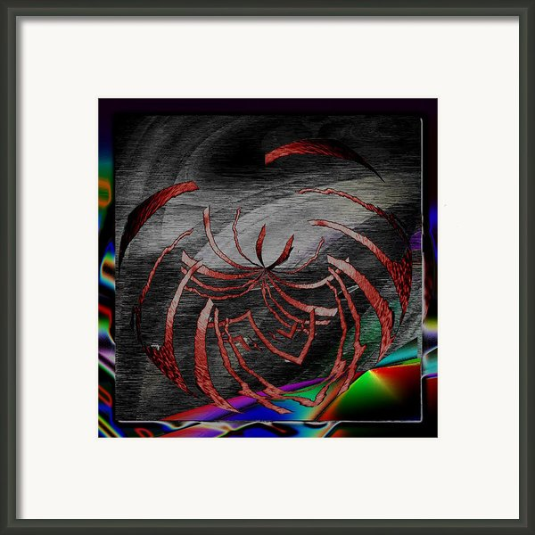 Enveloped 10 Framed Print By Tim Allen