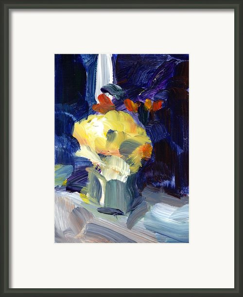 Evening Flower Framed Print By Amantha Tsaros
