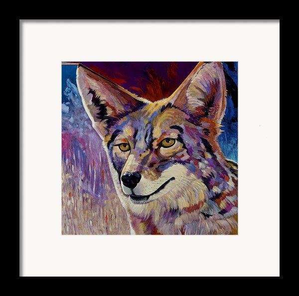 Evening Hunt Framed Print By Bob Coonts