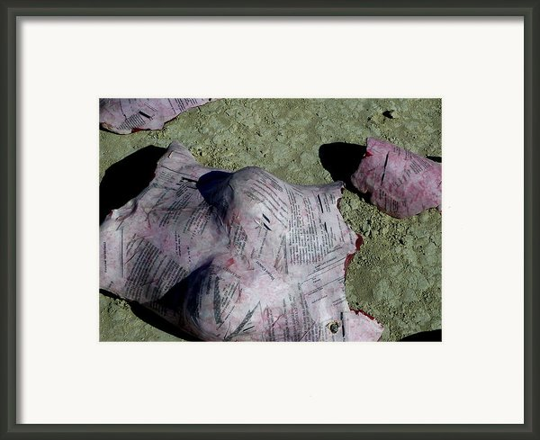 Exfoliate Detail Framed Print By Chad Rice