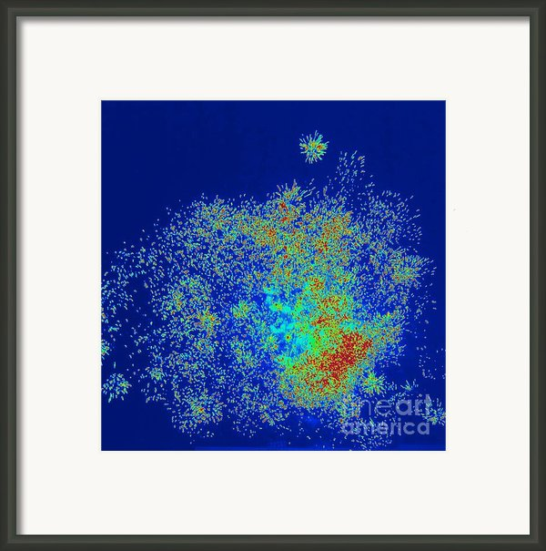Explosion Framed Print By Shelia Kempf