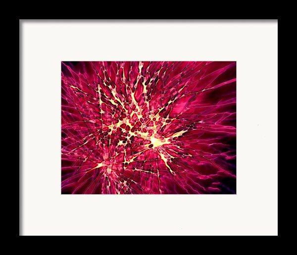 Explosion Framed Print By Stephanie Hollingsworth