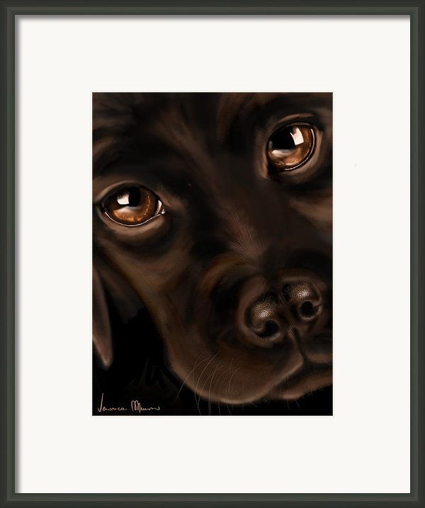 Eyes Framed Print By Veronica Minozzi