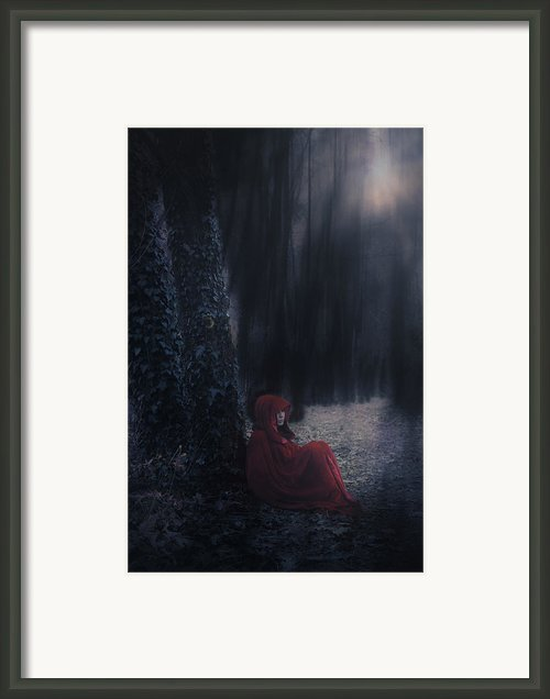Fairy Tale Framed Print By Joana Kruse