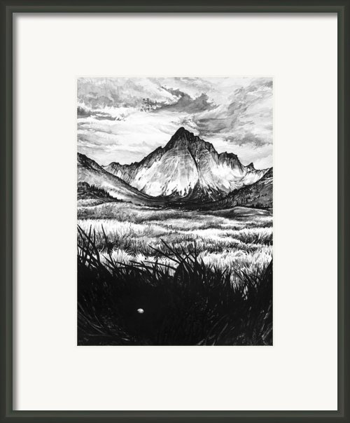 Faith As A Mustard Seed Framed Print By Aaron Spong