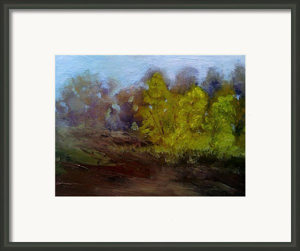 Fall Color Framed Print By Dwayne Gresham