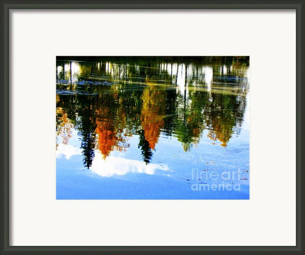 Fall Colors Framed Print By Pauli Hyvonen