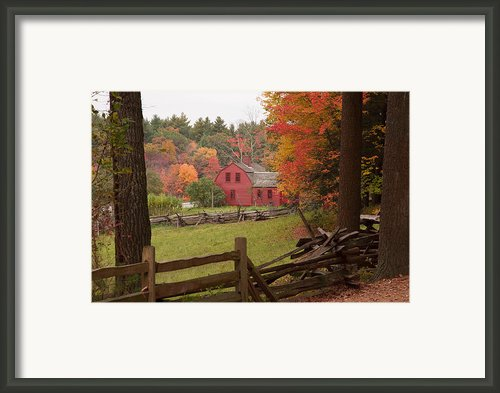 Fall Foliage Over A Red Wooden Home At Sturbridge Village Framed Print By Jeff Folger