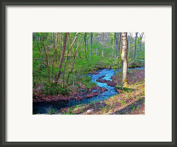 Fall Hollow At Mile 392 Of Natchez Trace Parkway-tn Framed Print By Ruth Hager