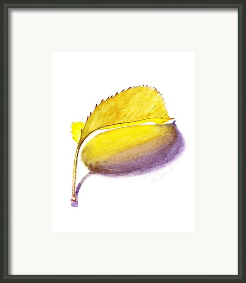 Fallen Leaf Yellow Shadows Framed Print By Irina Sztukowski