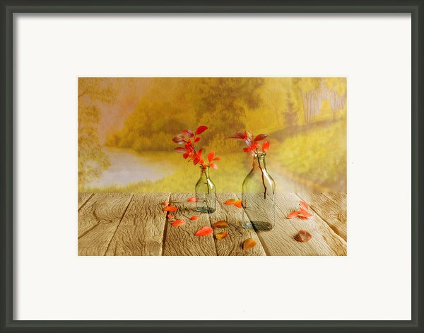 Fallen Leaves Framed Print By Veikko Suikkanen