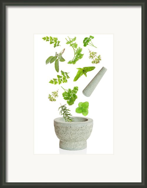 Falling Herbs Framed Print By Christopher And Amanda Elwell