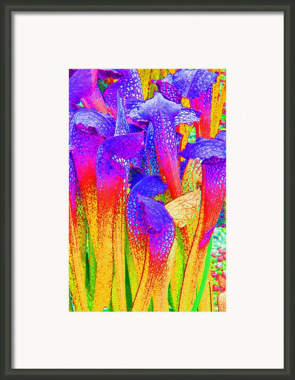 Fantasy Flowers Framed Print By Margaret Saheed