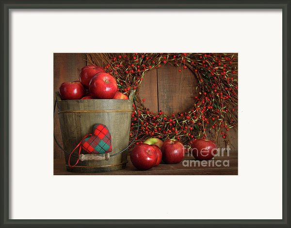 Farm Fence In Rural Farm Setting Framed Print By Sandra Cunningham
