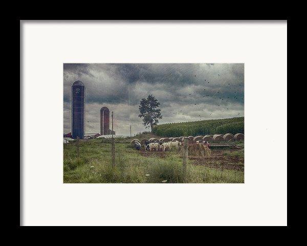 Farm Landscape Framed Print By Kathy Jennings