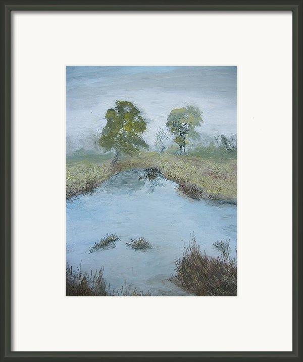 Farm Pond Framed Print By Dwayne Gresham