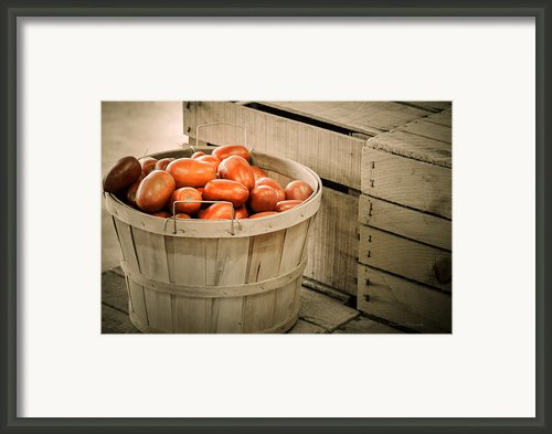 Farmers Market Plum Tomatoes Framed Print By Julie Palencia