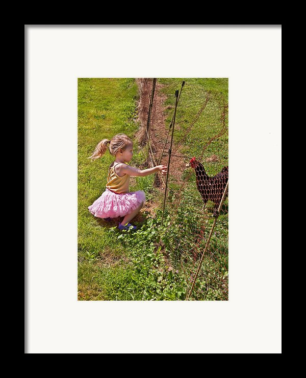 Feeding Time Framed Print By Valerie Garner