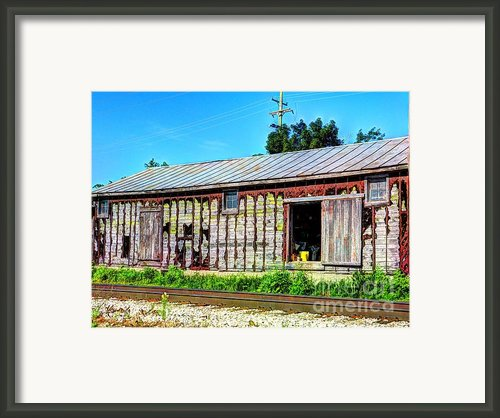 Feeds Framed Print By Mj Olsen