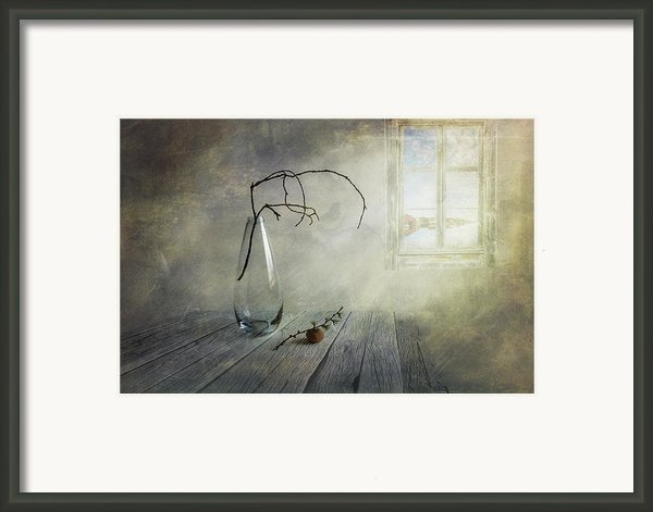 Feel A Little Spring Framed Print By Veikko Suikkanen