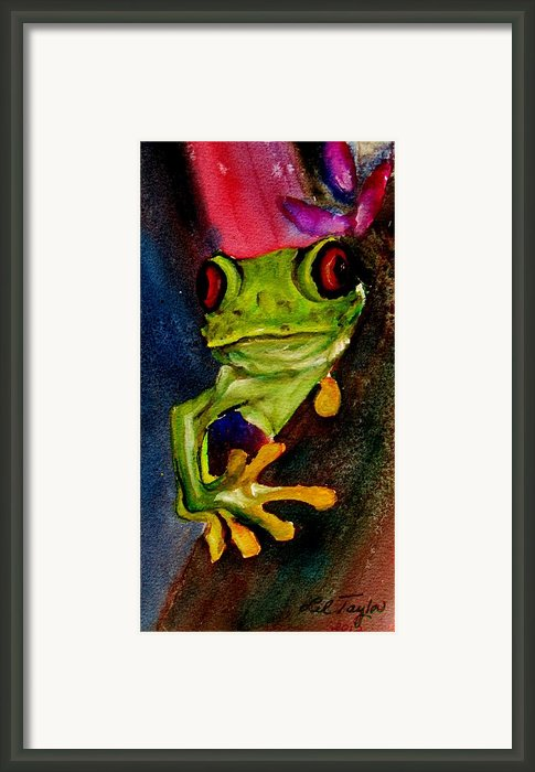 Feeling A Little Froggy Framed Print By Lil Taylor