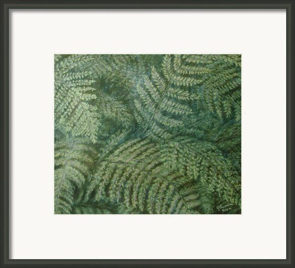 Fern Frenzy Framed Print By Joann Renner